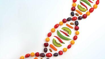 Besin Tercihlerimiz Genlerimiz Tarafından Belirlenmiş Olabilir mi?