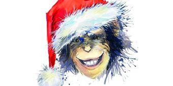 Bonobo'dan Noel Baba'ya Gülmek