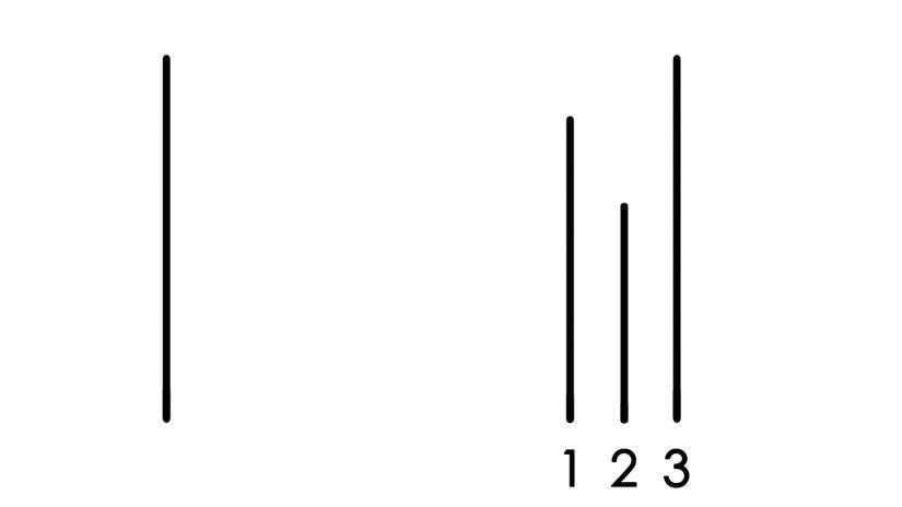 Asch Testi, Soru 2