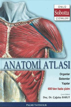Anatomi Atlası Sobotta Çizimleri