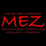 Mehmet Emin Zordağlar