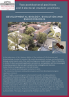 PhD and Postdoc positions in developmental biology, evolution and endosymbiosis