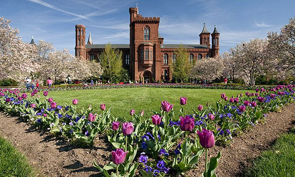 The Smithsonian Institution Fellowship Program (SIFP)