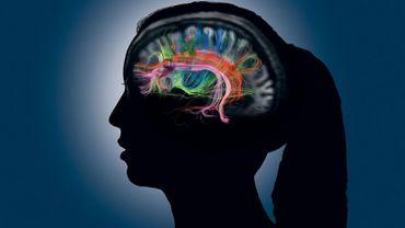 İnsan Hafızasına ve Anılara Ne Kadar Güvenebiliriz?