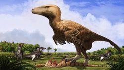Dinozorlar Hangi Hayvanlar Alemi'nin Neresinde Yer Alır? Dinozorları, Hangi Faktörlere Göre Sınıflandırılıyor?