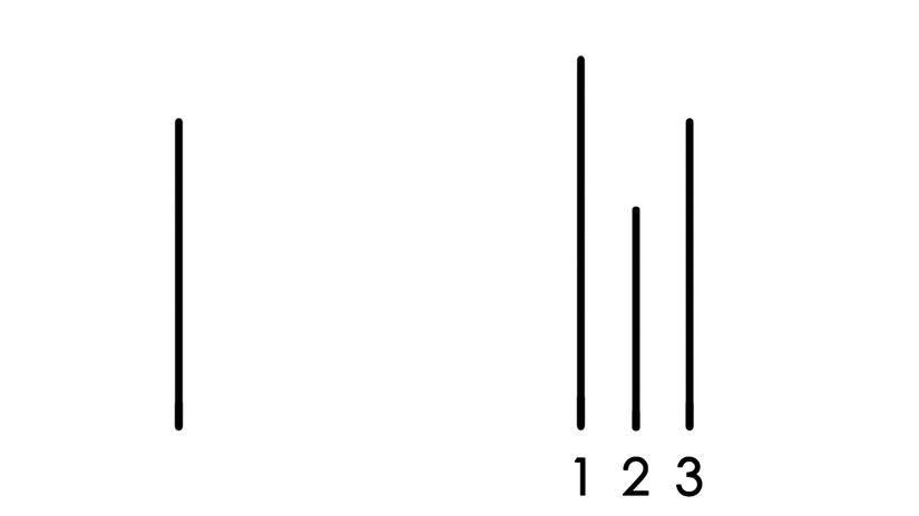 Asch Testi, Soru 3
