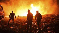 Akdeniz Ormanları'ndaki Yangınlar, Bu Yangınlarla Mücadele Yöntemleri ve Yangın Sonrası Yanlış Ağaçlandırma Konusunda Önemli Bir Uyarı!